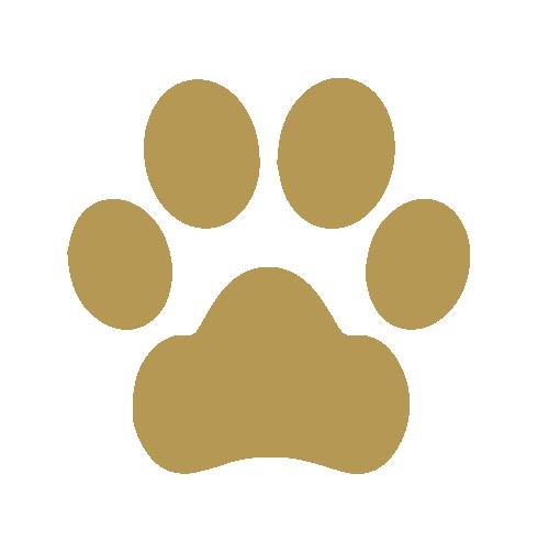 Icona animali ammessi